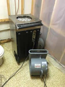 Wet toilet with black mold repaire